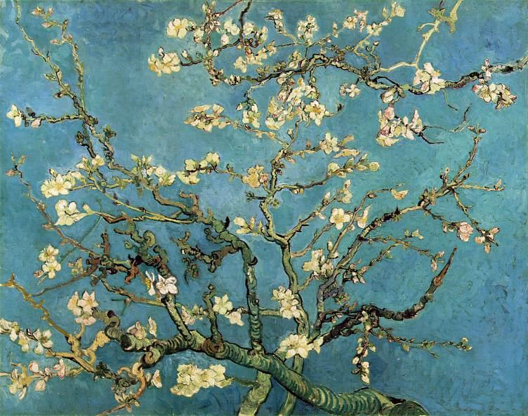 Branches fleuries d'amandier - Van Gogh