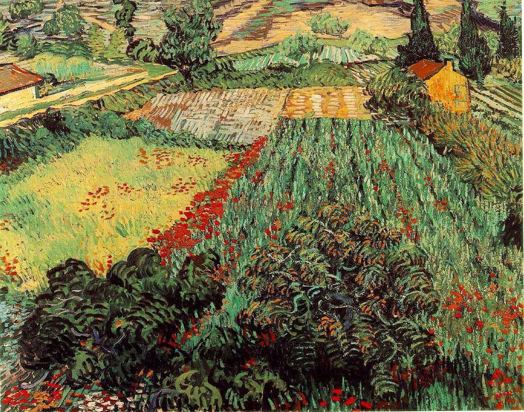 Champ aux coquelicots - Van Gogh
