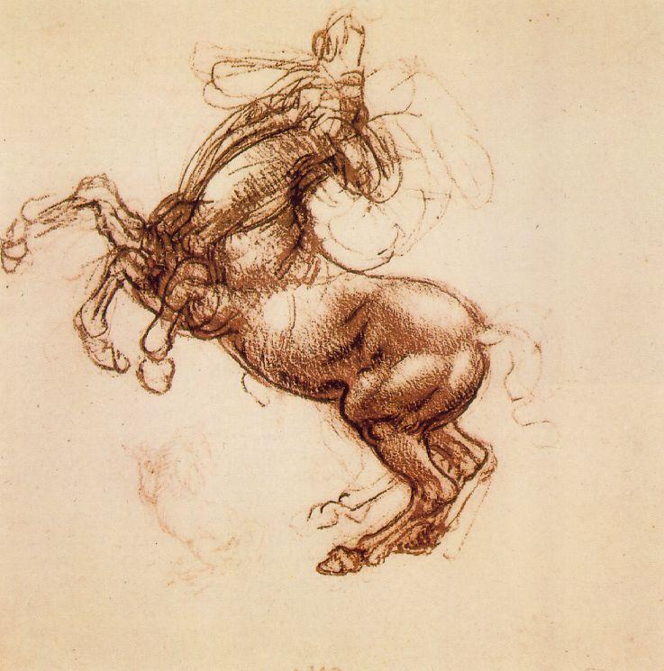 Cheval cabré - De Vinci