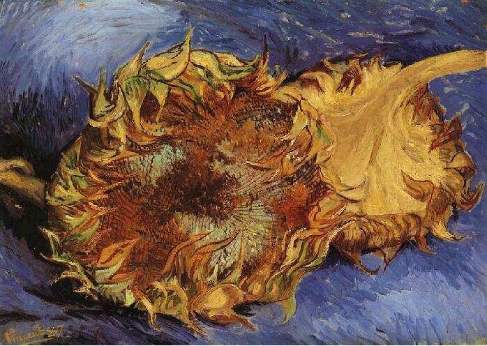 Deux tournesols coupés - Van Gogh